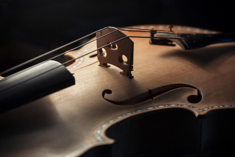 Violino a colore naturale