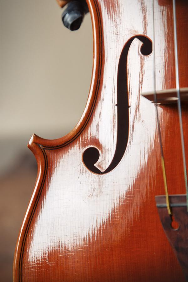 Particolare Violino