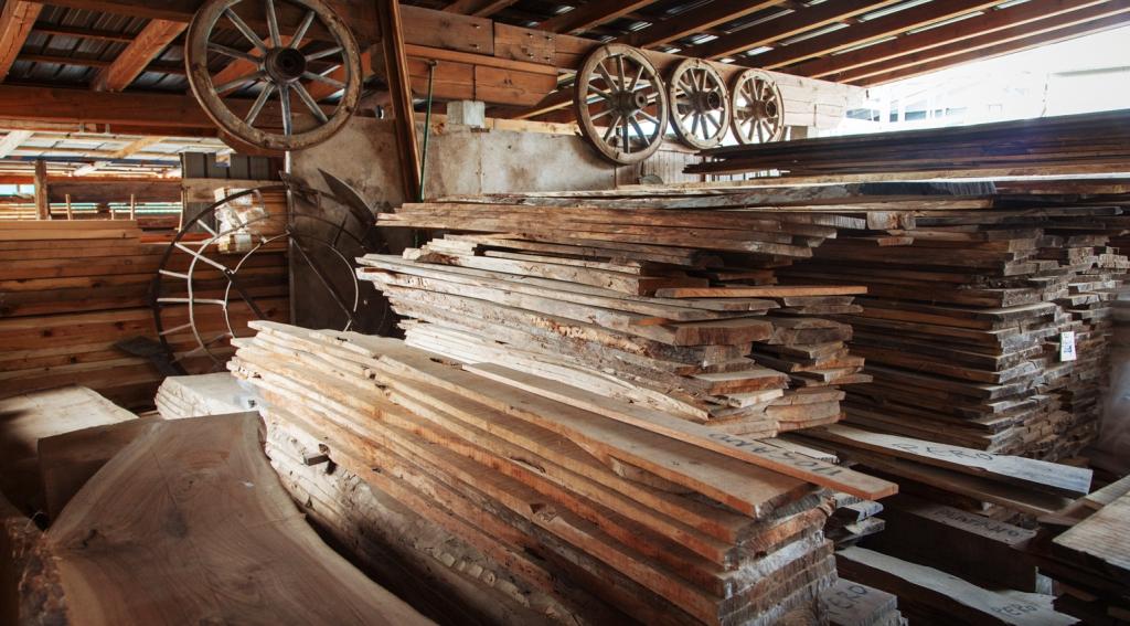 Antiche ruote di carro